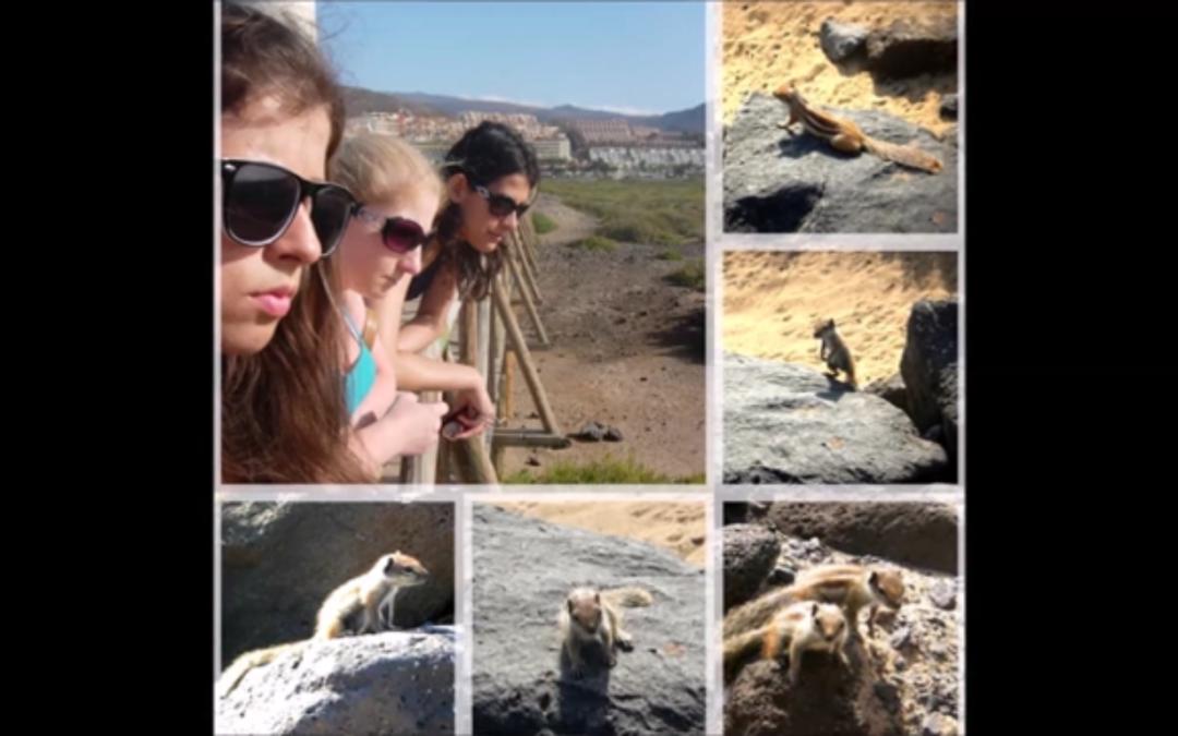 Unforgettable moments from my visit to Fuerteventura Island